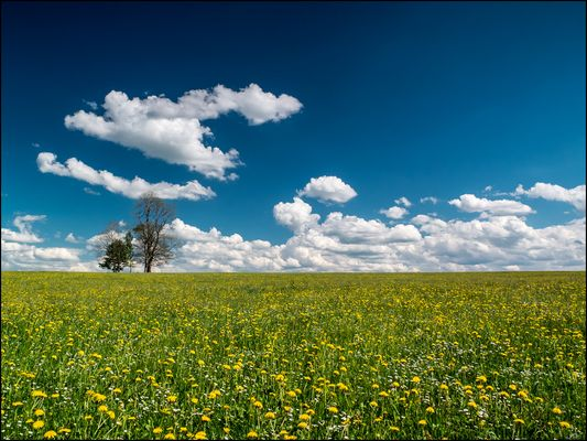 Frühling in Oberbayern