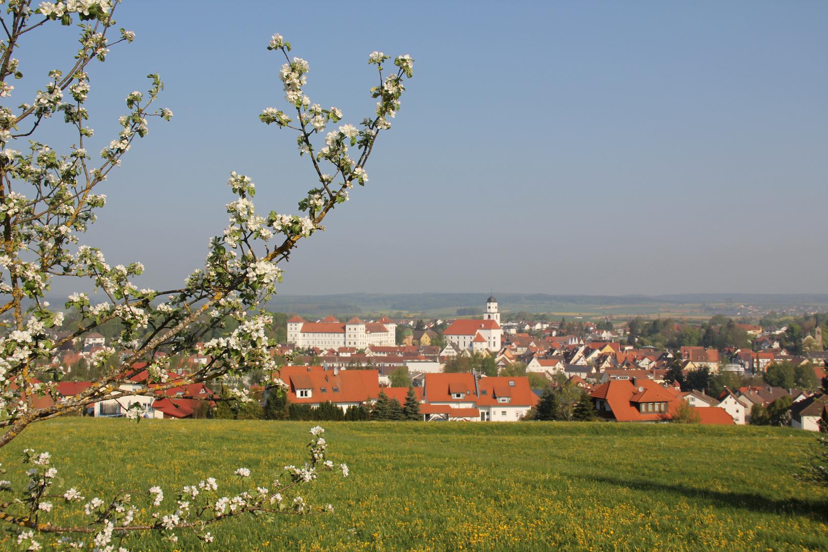 Frühling in Oberschwaben