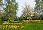 Frühling in Osnabrück