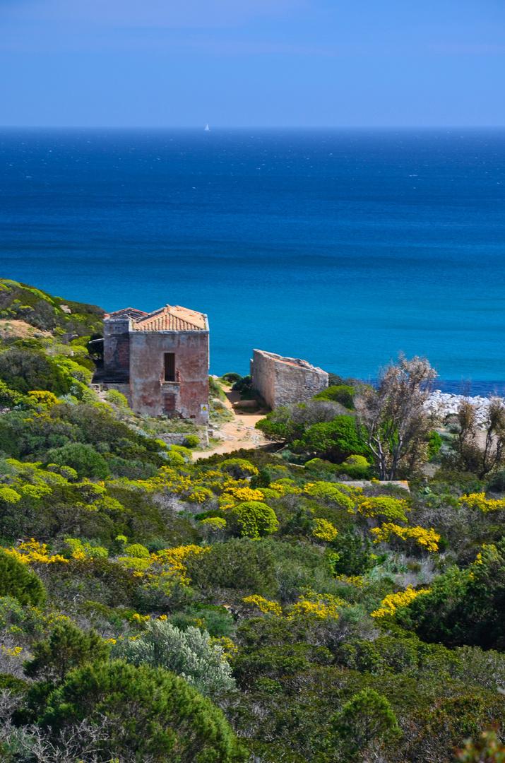 Frühling in Sardinien