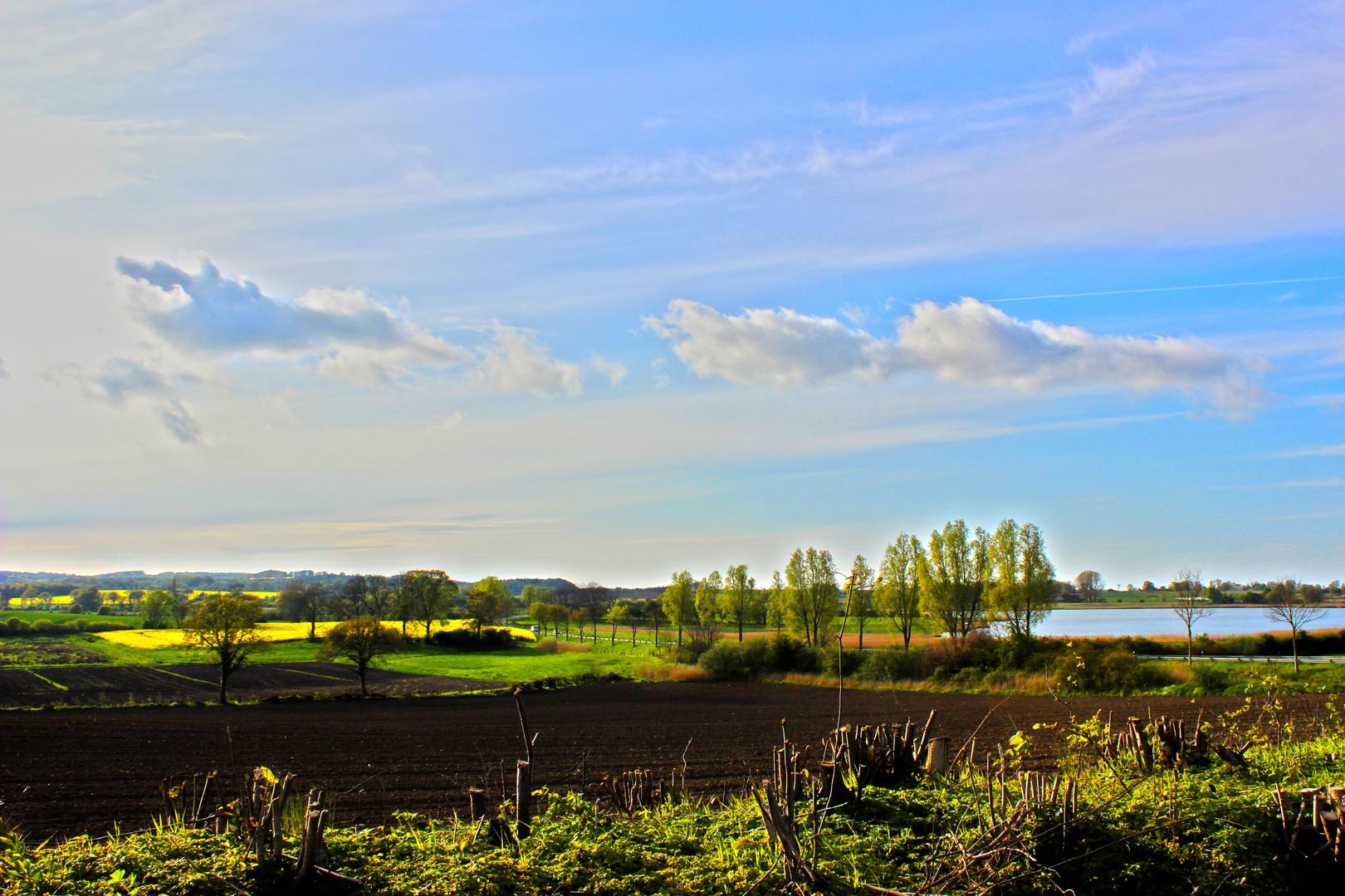 Frühling in Schleswig Holstein
