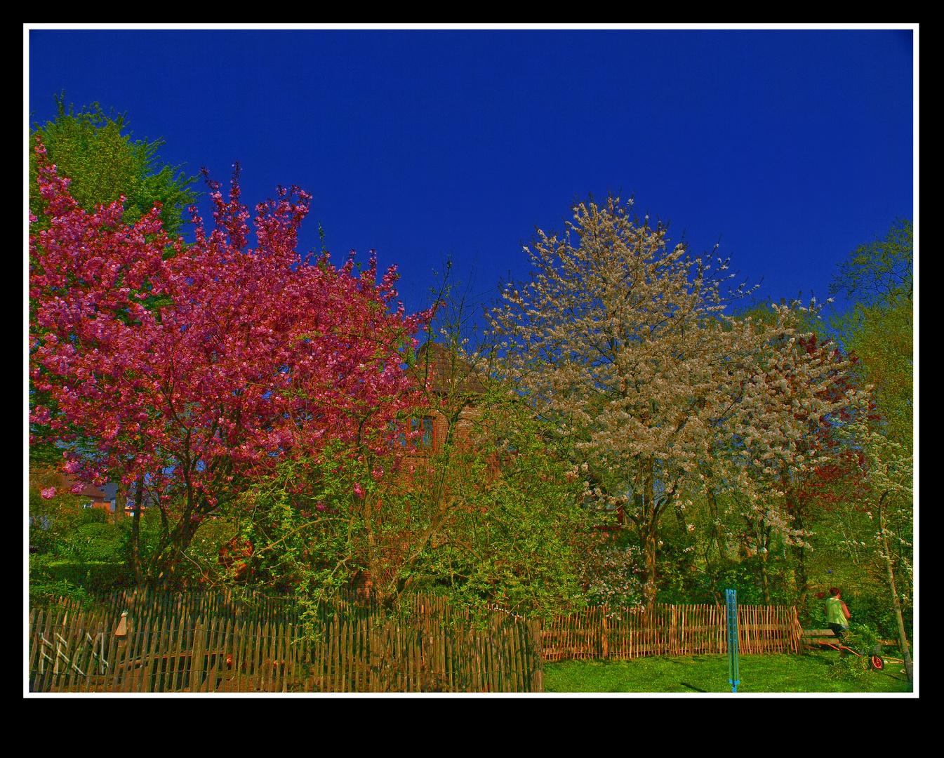 Frühling in Schönwalde