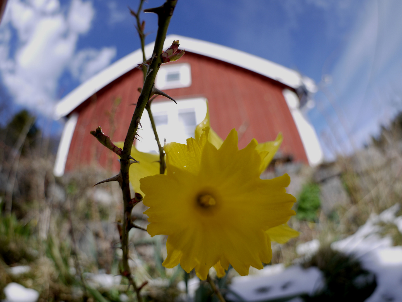 Frühling in Schweden...........................