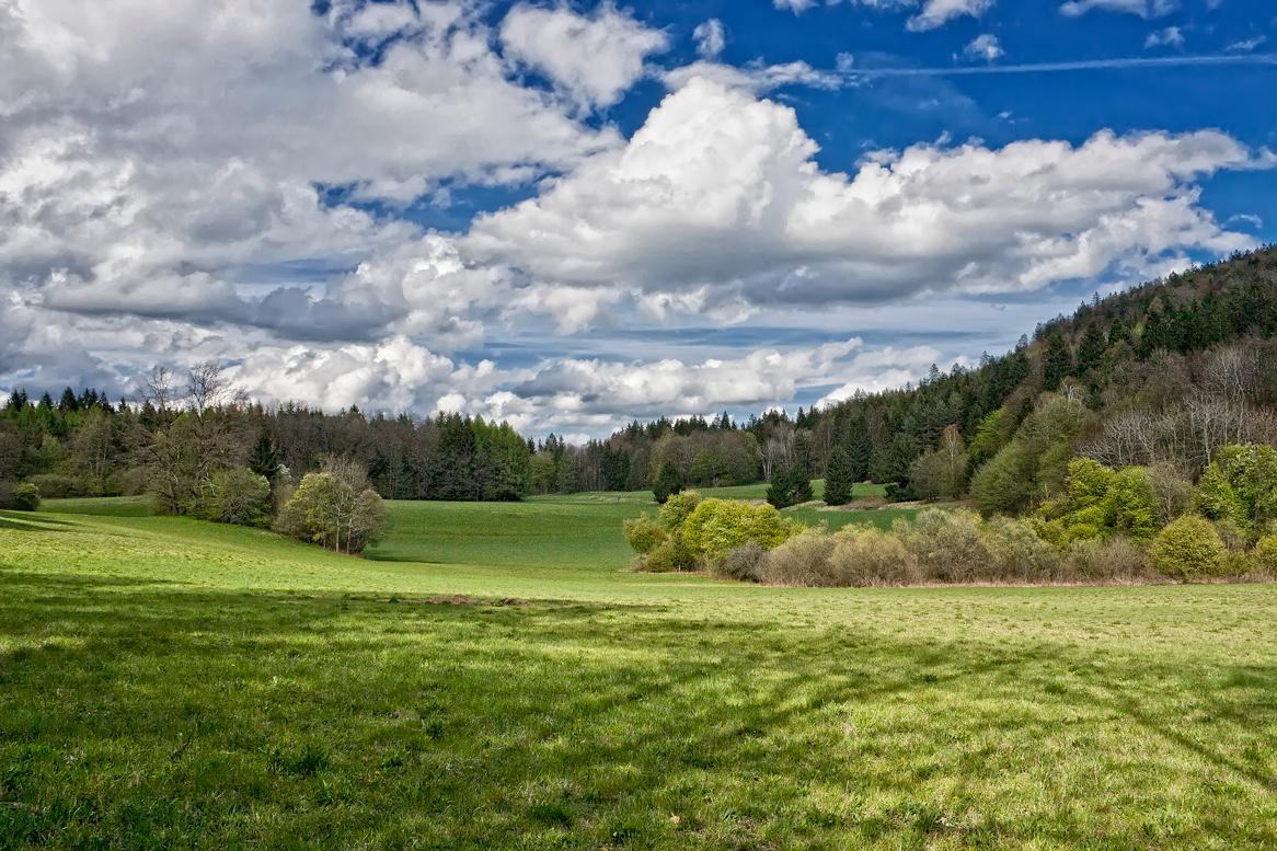 Frühling in Südkärnten III