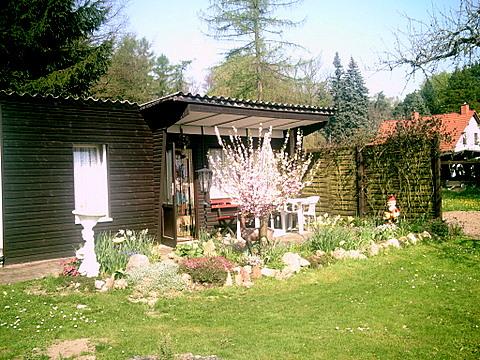 Frühling in Wergzahna TF