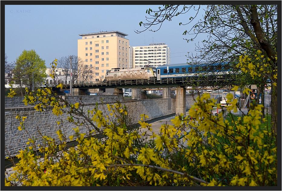 Frühling in Wien III