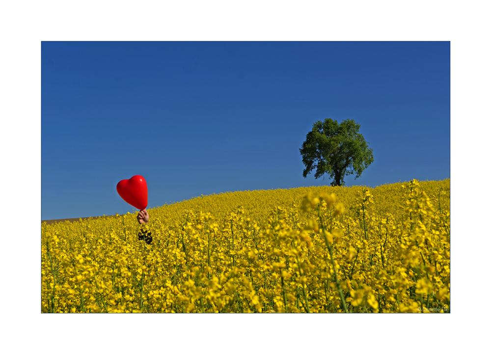 Frühling mit Herz