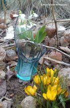 Frühling oder einfach nur ein komisches Motiv?