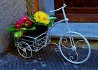 Frühling per Fahrrad
