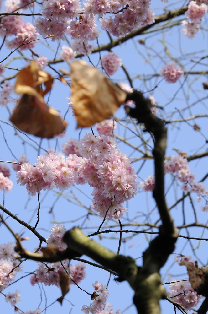 Frühling trifft Herbst