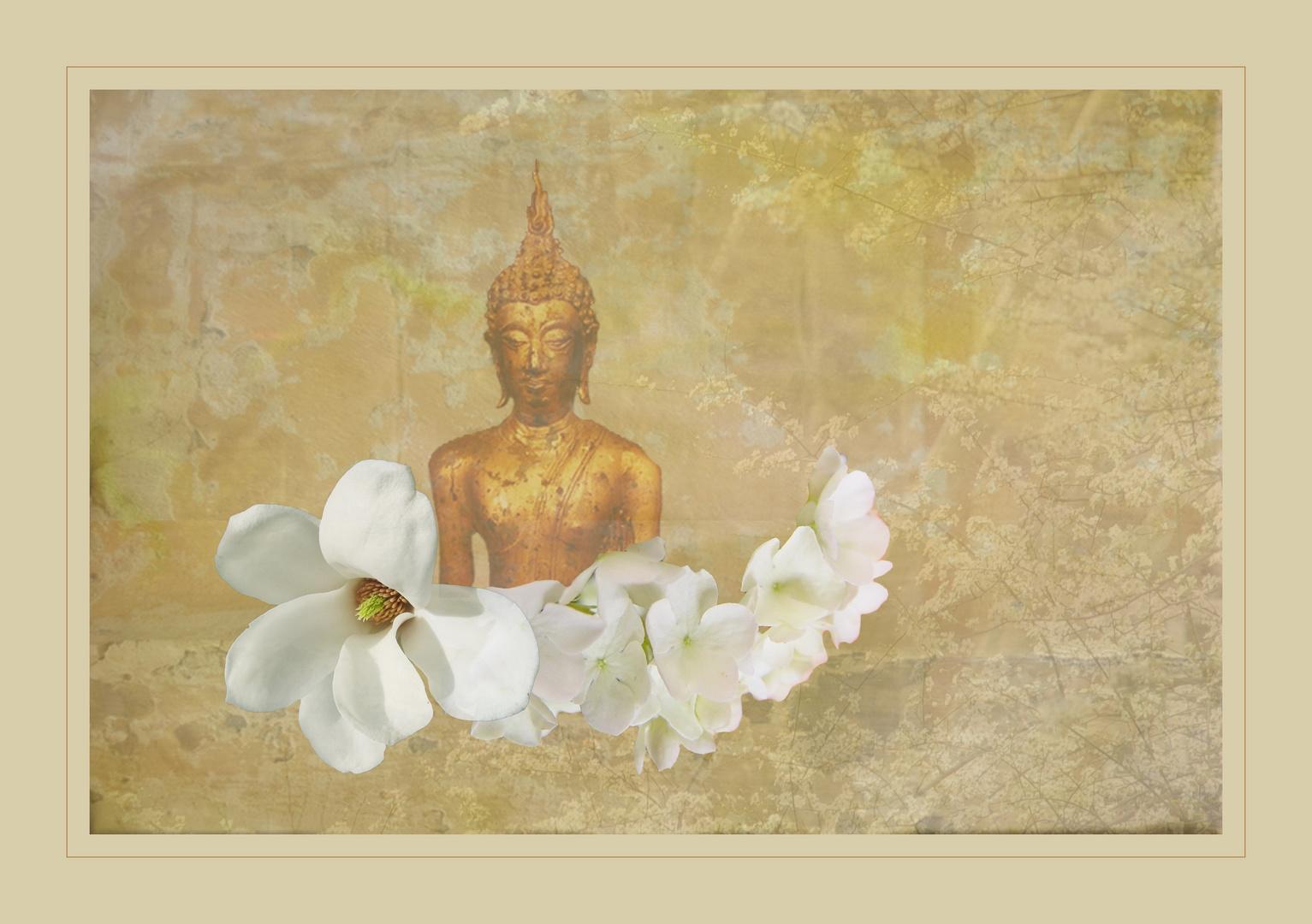 Frühling und Meditation