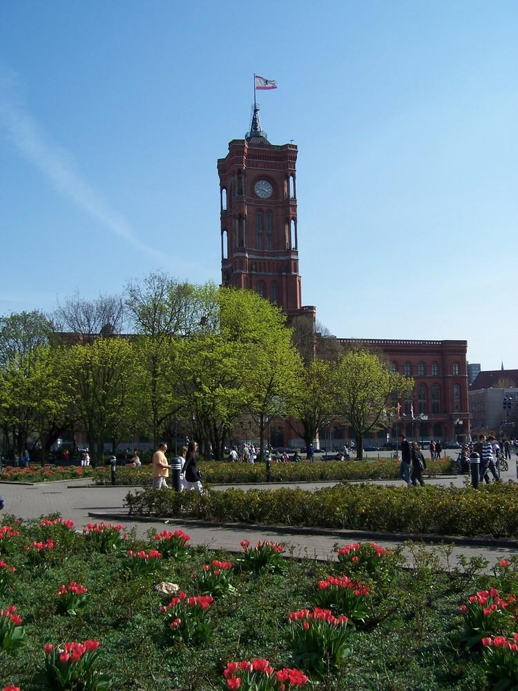 Frühling vor dem Roten Rathaus