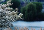 Frühlings Impressionen