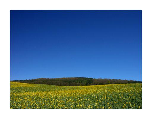 Frühlings-Lächeln einer Landschaft... (1. DER REIHE: WAS MAN MIT RAPS...)