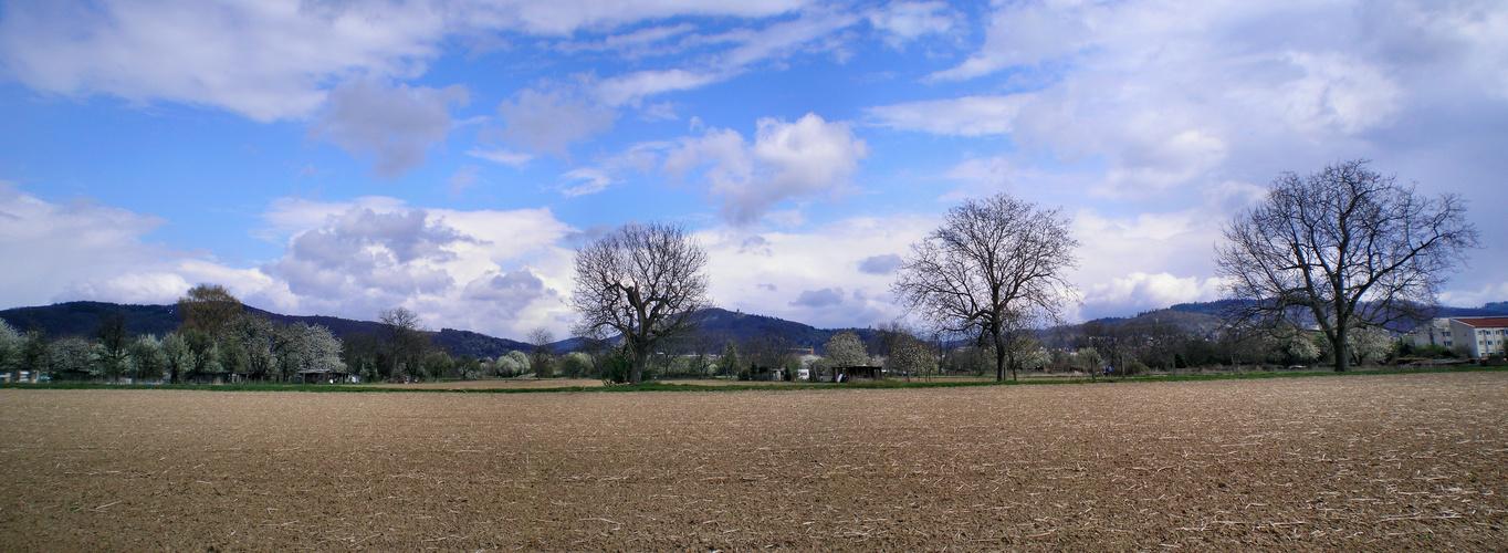Frühlings Panorama I