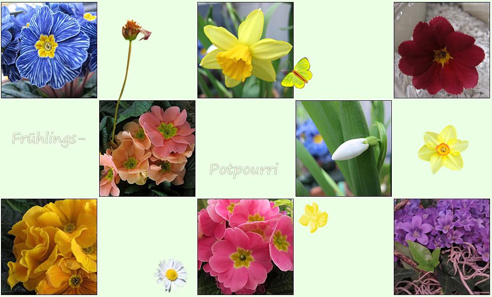 Frühlings-Potpourri