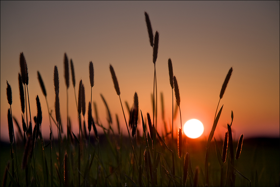 Frühlingsabend