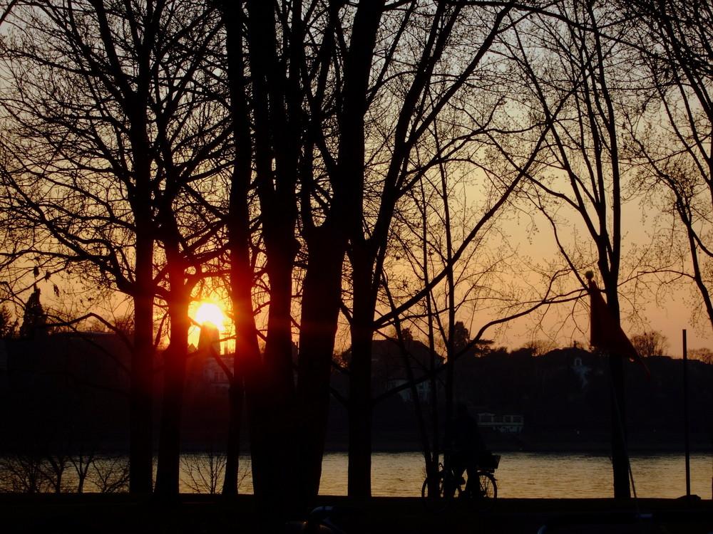 Frühlingsabend am Rhein