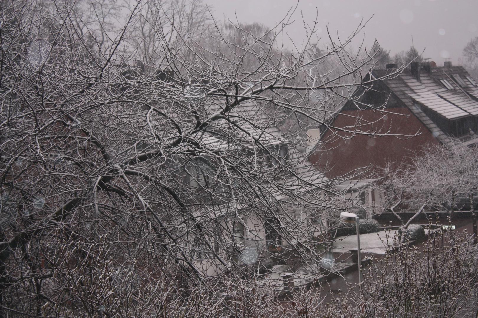 Frühlingsanfang in Dinslaken