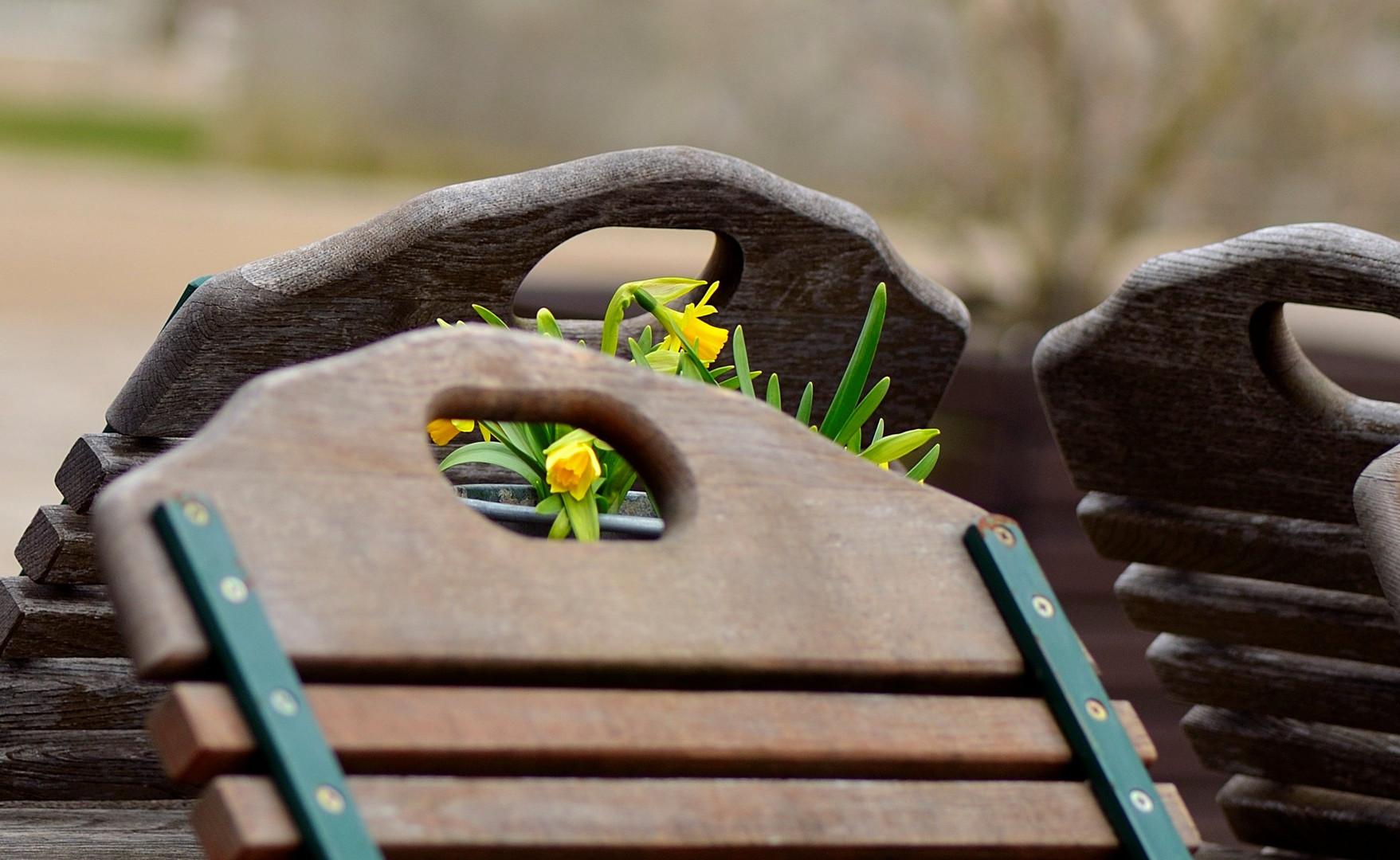 Frühlingsaussichten...