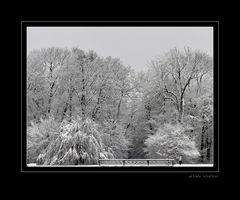 Frühlingsbeginn 2007 [3]