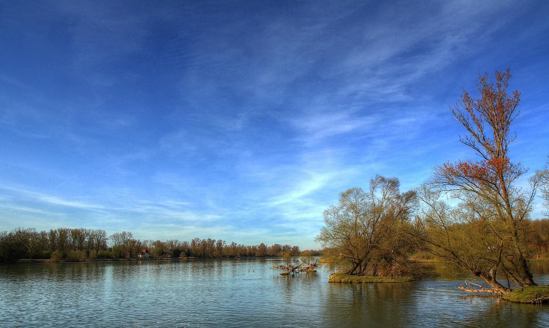 Frühlingsbeginn am Rhein