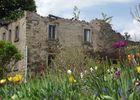 Frühlingserwachen vor alten Mauern