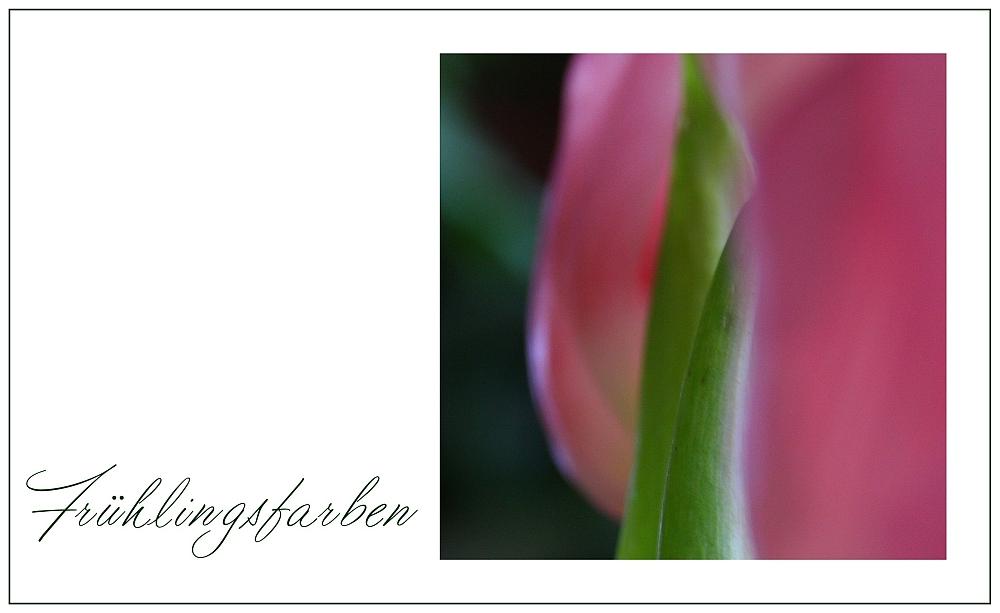 Frühlingsfarben...