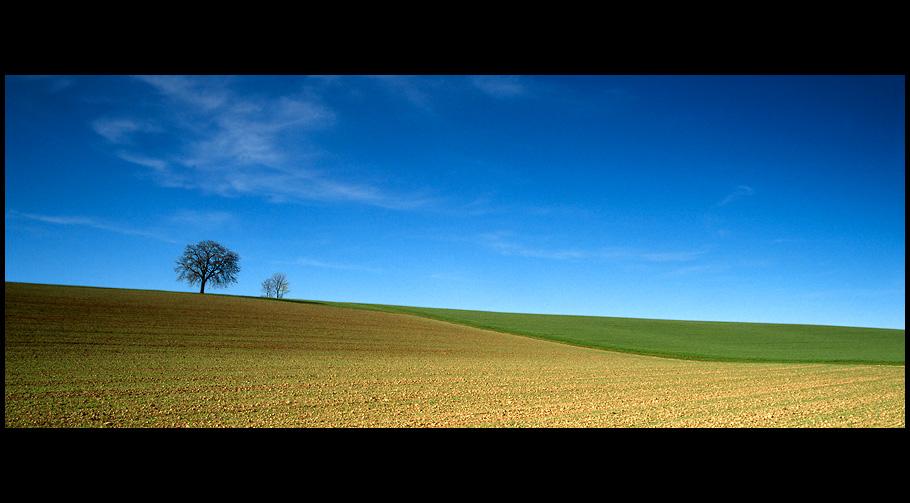 Frühlingsfelder 1