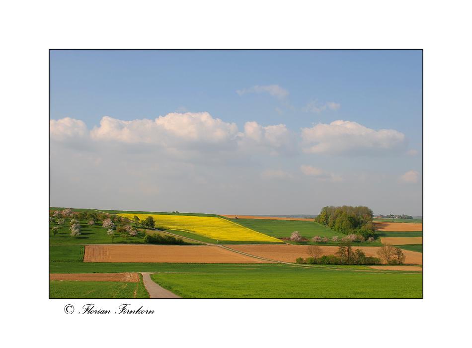 Frühlingsfelder