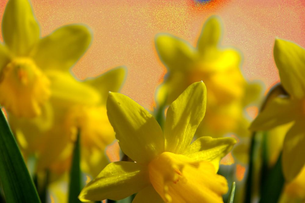 Frühlingsgefühl
