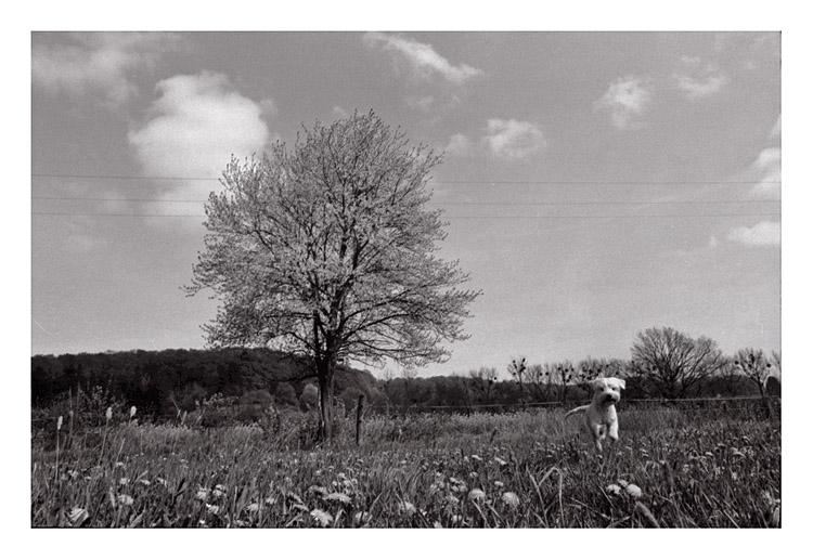 Frühlingsgefühle...
