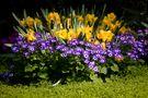 Frühlingsgrüße von Karin und Axel Beck