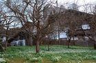 Frühlingsgrüße aus Tirol