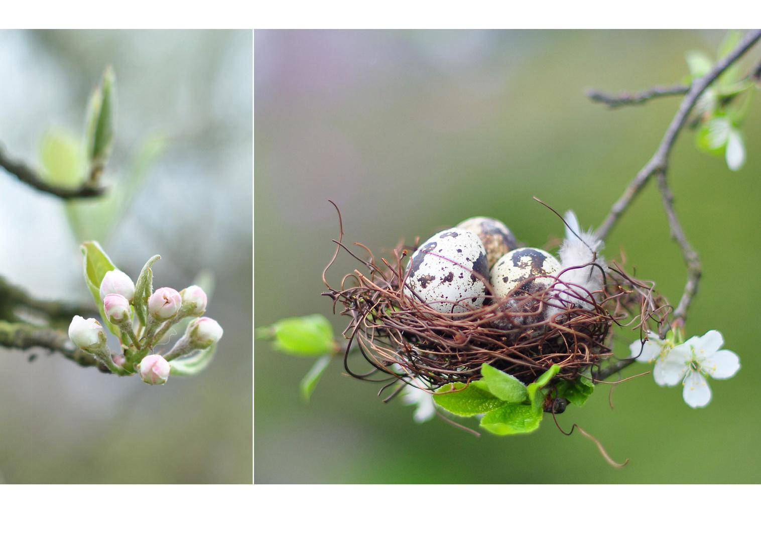 Frühlingskinder