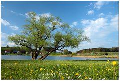 Frühlingslust...