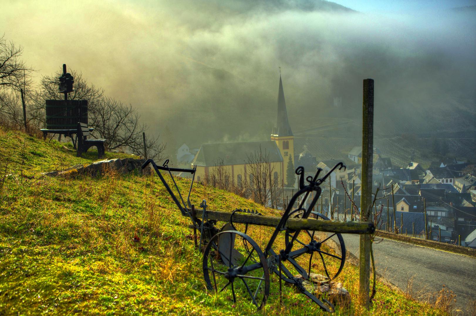 Frühlingsmorgen mit Sonnenschein in Senheim