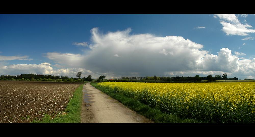 Frühlingspanoramen 2: Unter Schauern