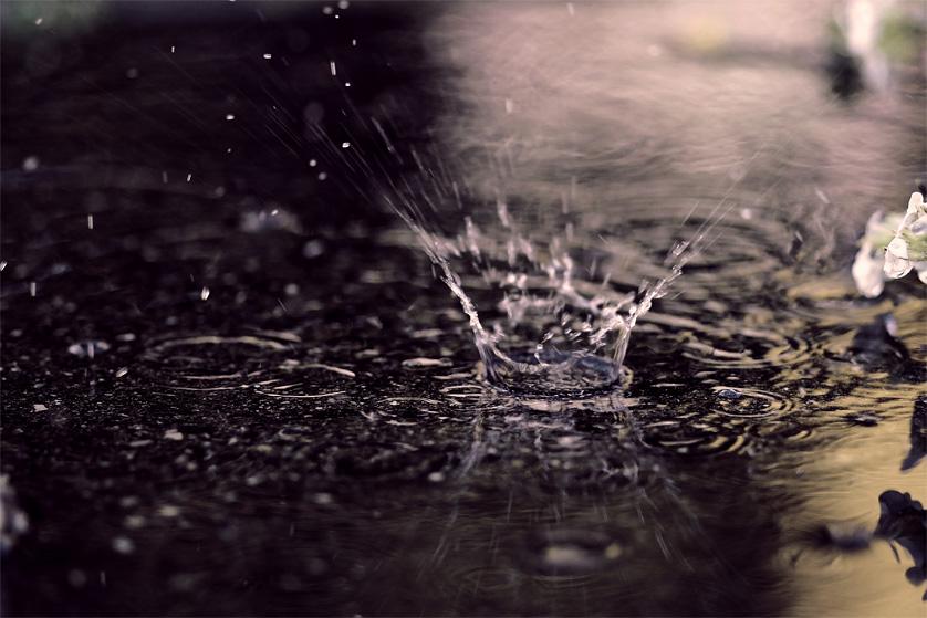 Frühlingsregen....