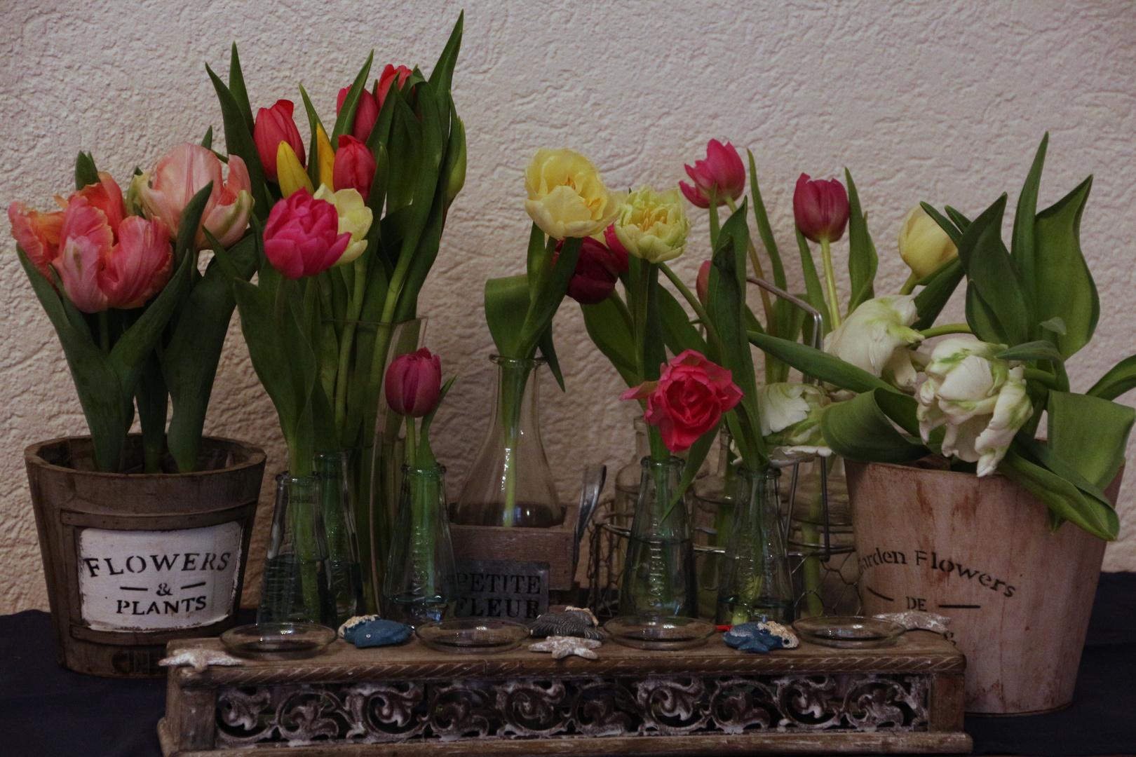 Frühlingsstimmung 3