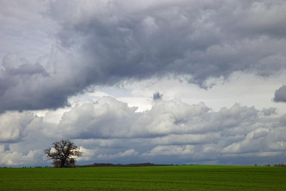 Frühlingswolken