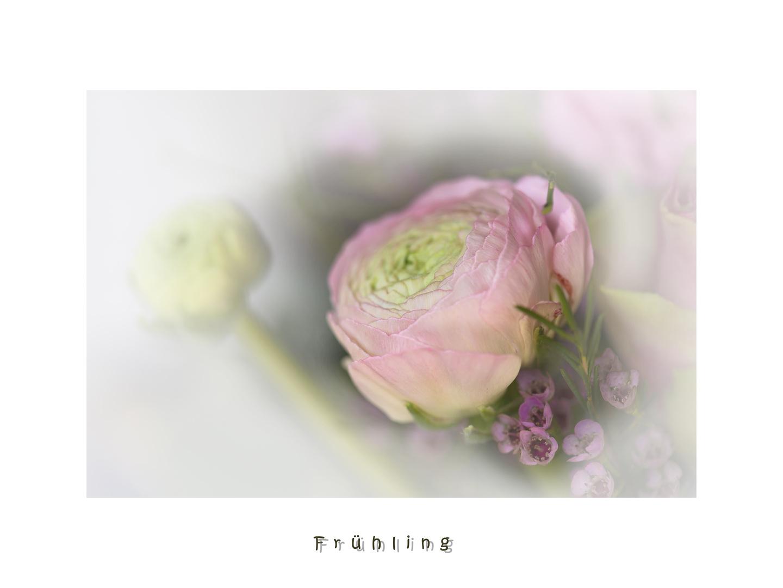 Frühlingszart.....