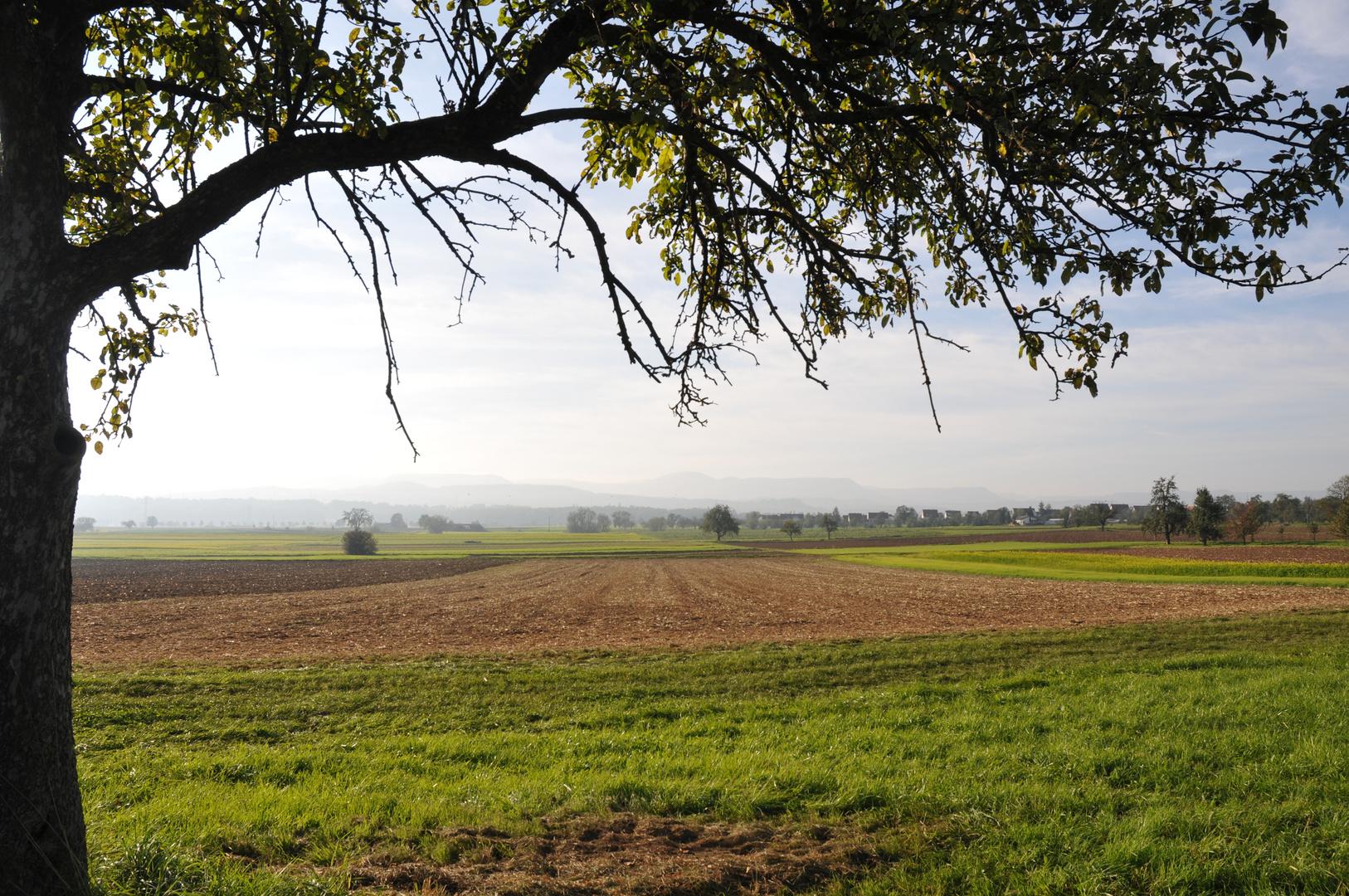 Frühmorgendlicher Blick auf die Silhouette der Schwäbischen Alb