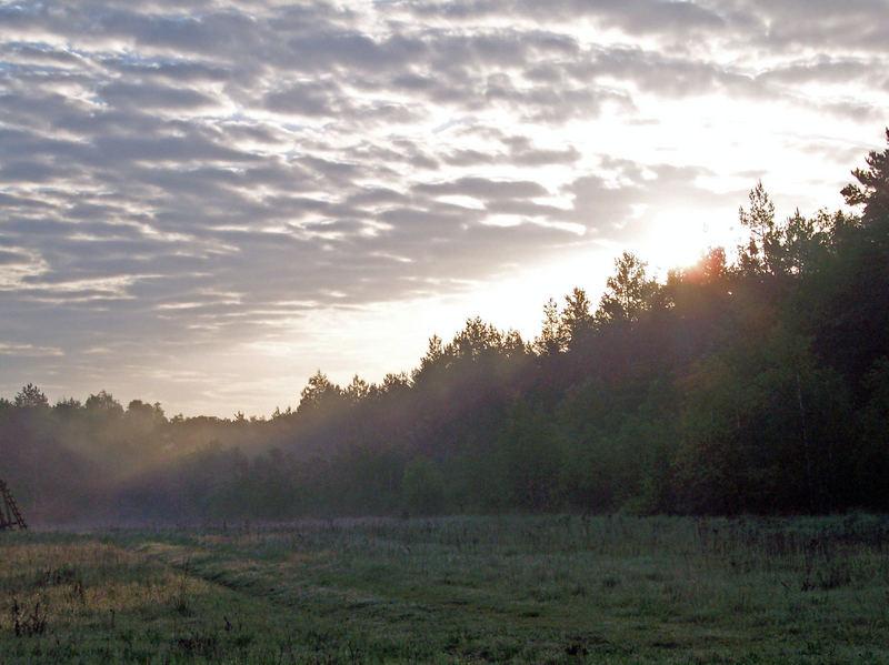 frühmorgens