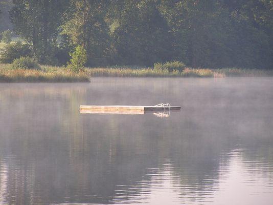 Frühnebel am Dietlhofer See