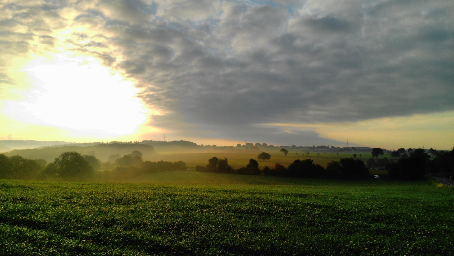 Frühsonne über den Feldern