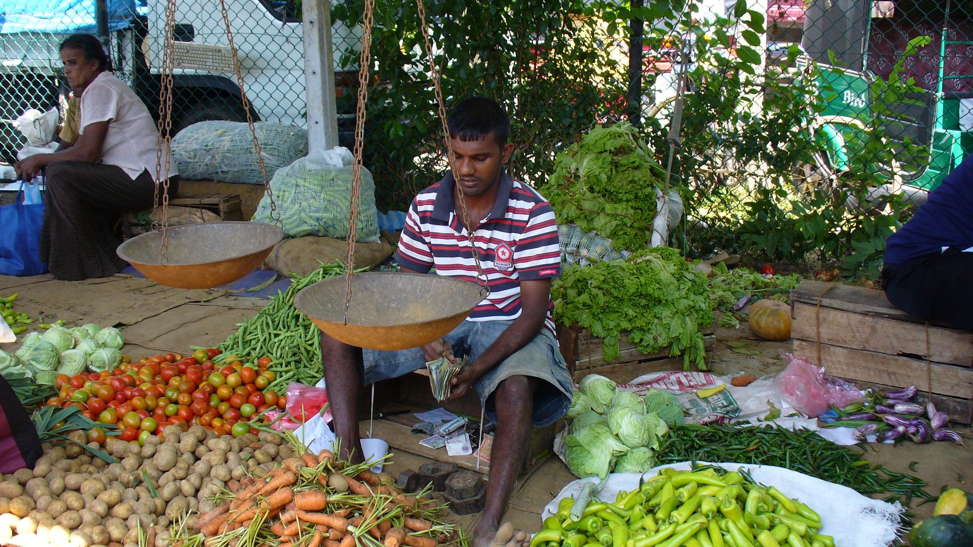 Fruit Market II