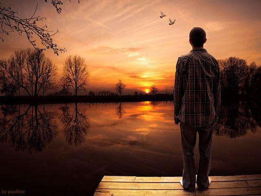 Frullo d'ali al tramonto