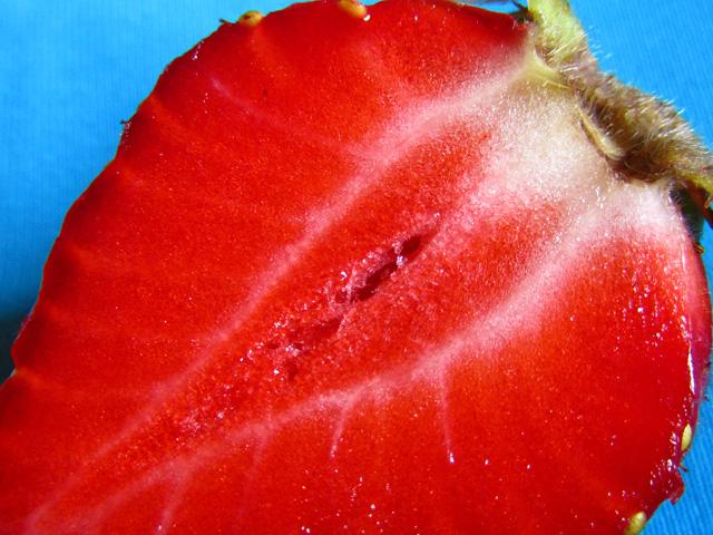 Frutilla Erótica