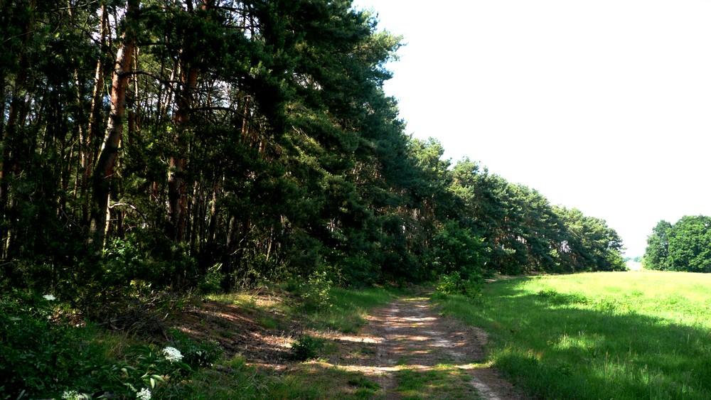 FTW = Fontane Wanderweg - Radeln durch des Landes Streusandbüchse